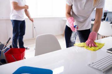 professionnel spécialisé dans le ménage